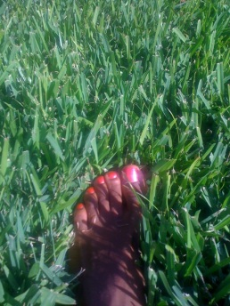 One day after work, I did handstands and cartwheels in this grass.